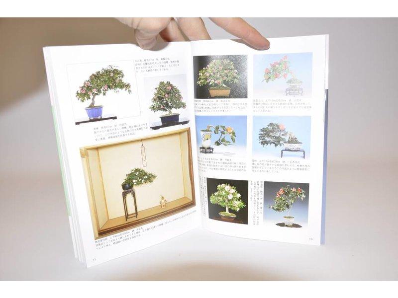 Camelia bonsai handboek