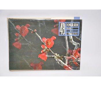 Kokufu-Ten # 48