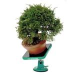 NEW Green T Mini - Shohin Bonsai Tavolo da lavoro Modello S