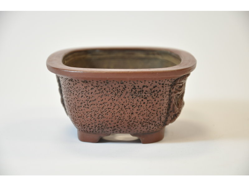 Rectangular pot  - Dragon - Bigei - 95 mm - 8954