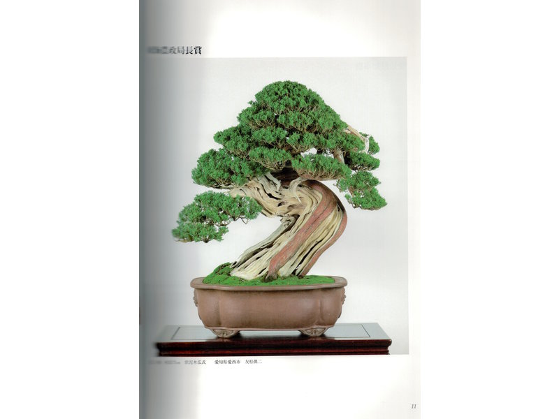 Meifu-ten # 89