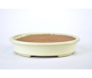 160 mm oval creme bonsai pot by Yamafusa from Tokoname