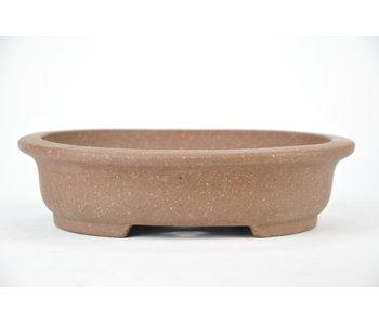 155 mm bonsai pot by Hokido from Tokoname. Oval, unglazed.