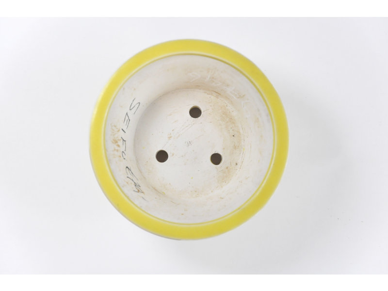 Ronde gele Seifu-pot - 119 x 119 x 50 mm