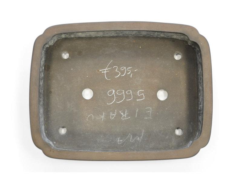 Rechteckiger unglasierter Eiraku-Bonsai-Topf - 375 x 290 x 95 mm