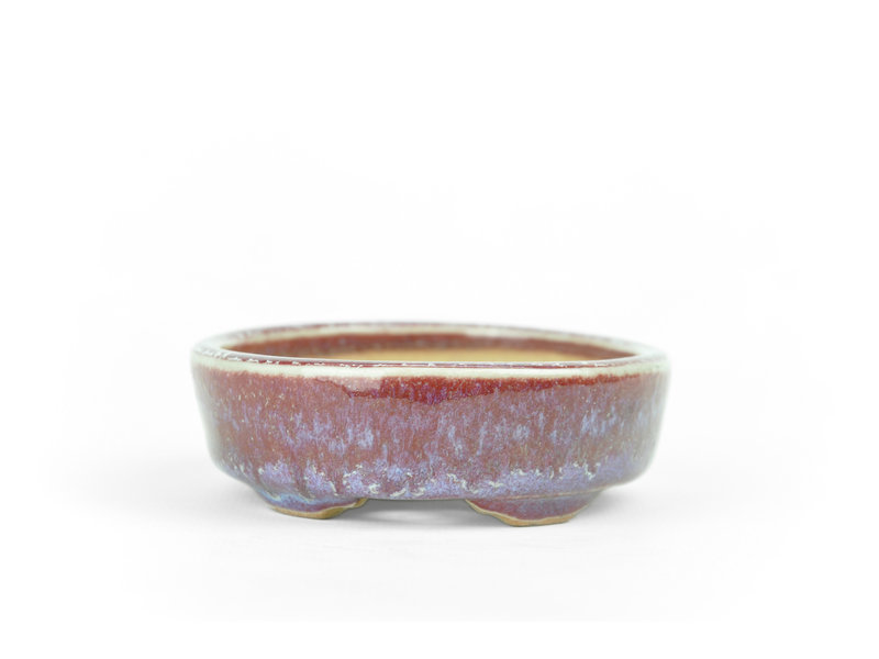 Ovale paarse en rode Issho bonsaipot - 104 x 87 x 25 mm