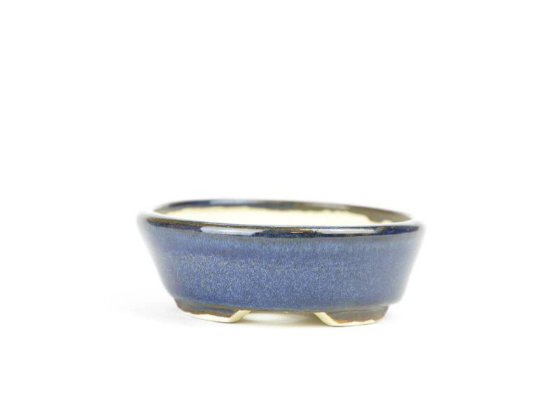 Ovale blauwe Bonsai bonsai pot - 90 x 81 x 25 mm