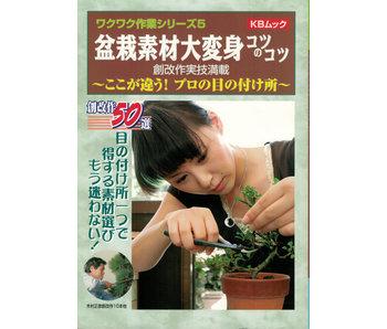 Bonsai Basics # 3