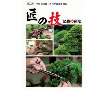 Japanese masters new work book