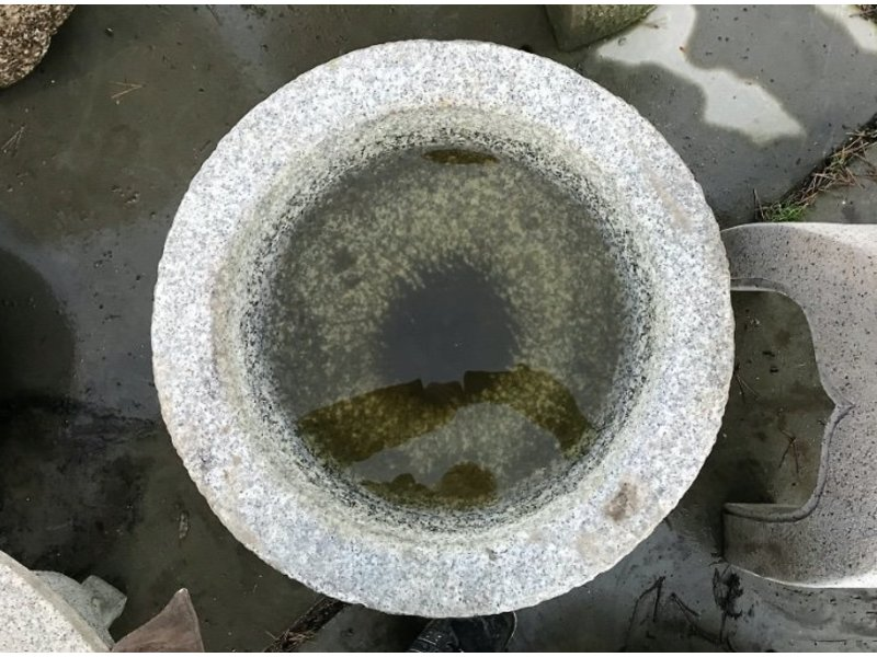 Japanse Tsukubai Natsume 60 cm