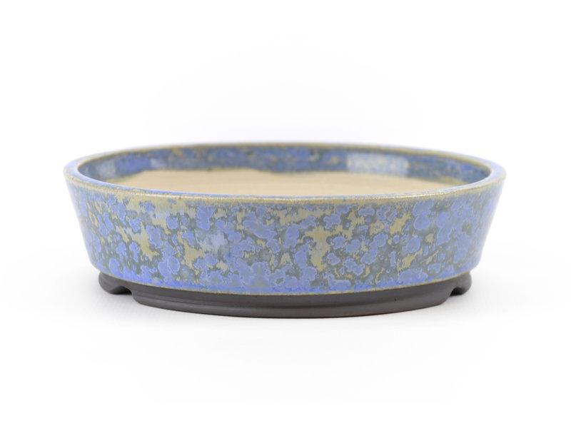 Ronde blauwe Frank Müller bonsaipot - 130 x 130 x 35 mm