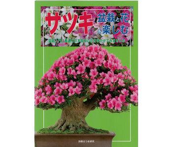 Cómo hacer satsuki bonsai no. 1 | Sr. Masamiyama | Tochinoha | 2014 | Japón