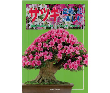 Hoe maak je Satsuki-bonsai nr. 1 | Meneer Masamiyama | Tochinoha | 2014 | Japan
