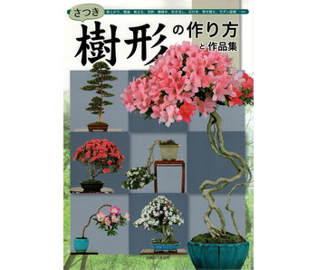 Come preparare il bonsai satsuki n. 3   Mr. Masamiyama   Tochinoha   2003   Giappone