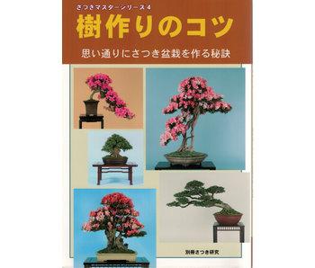 Cómo hacer satsuki bonsai no. 4 | Sr. Masamiyama | Tochinoha | 2017 | Japón