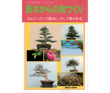 Comment faire un bonsaï satsuki no. 5 | M. Masamiyama | Tochinoha | 2018 | Japon