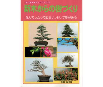 Cómo hacer satsuki bonsai no. 5 | Sr. Masamiyama | Tochinoha | 2018 | Japón