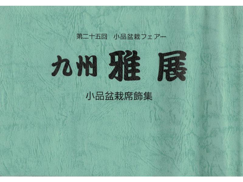 Kyushu Shohin-ten nr. 21 | Nippon Bonsai Association | Japan | paperback