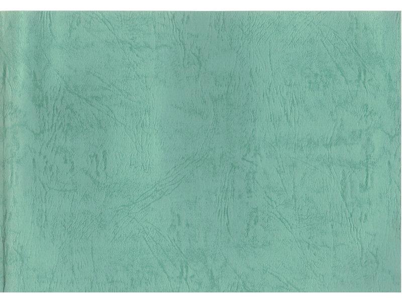 Kyushu Shohin-ten nr. 25 | Nippon Bonsai Association | Japan | paperback