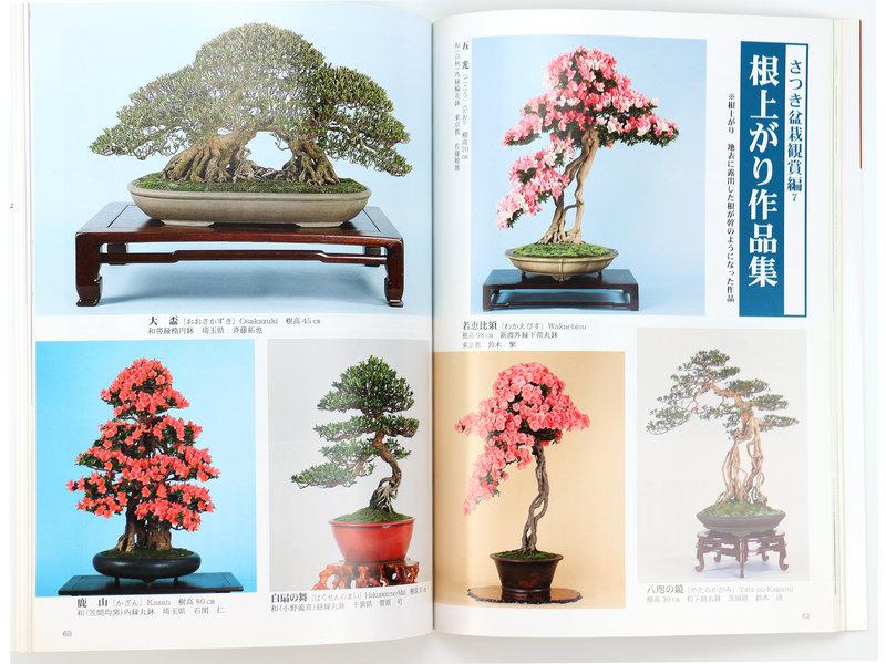 Hoe maak je Satsuki-bonsai nr. 4 | Meneer Masamiyama | Tochinoha | 2017 | Japan | paperback