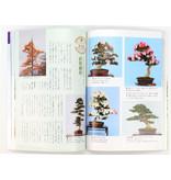 Hoe maak je Satsuki-bonsai nr. 3 | Meneer Masamiyama | Tochinoha | 2003 | Japan | paperback