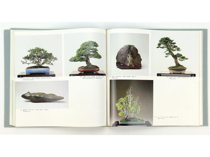 5e internationale bonsai- en suiseki-tentoonstelling | Nippon Bonsai Association | Japan | hardcover met hoes