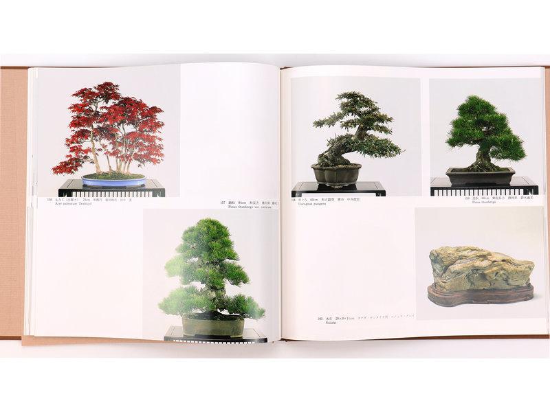10e internationale bonsai- en suiseki-tentoonstelling | Nippon Bonsai Association | Japan | hardcover met hoes
