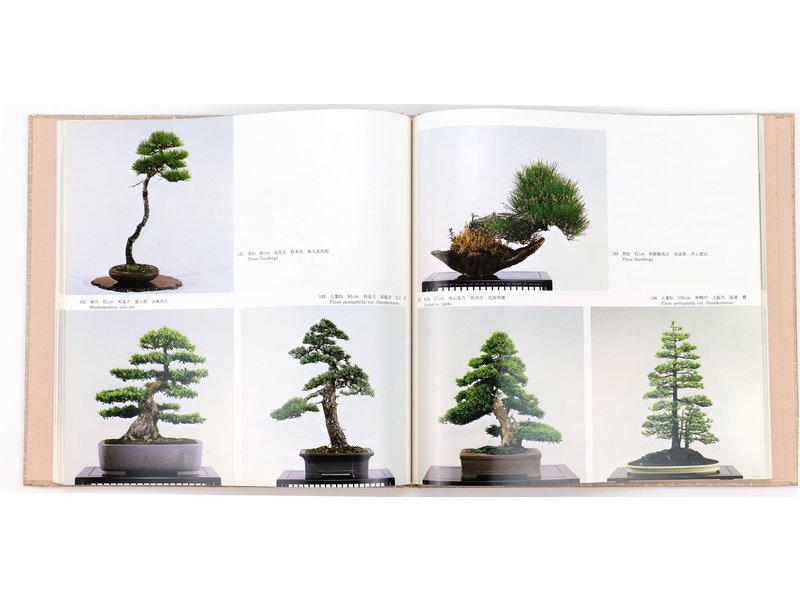 7e internationale bonsai- en suiseki-tentoonstelling | Nippon Bonsai Association | Japan | hardcover met hoes