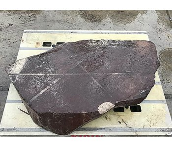 Japanese Ornamental Rock Nagoya 21 cm