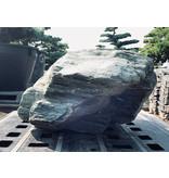 Japanse Sierrots Shikoku 34 cm