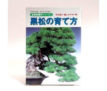 Pinus thunbergii bonsai manual