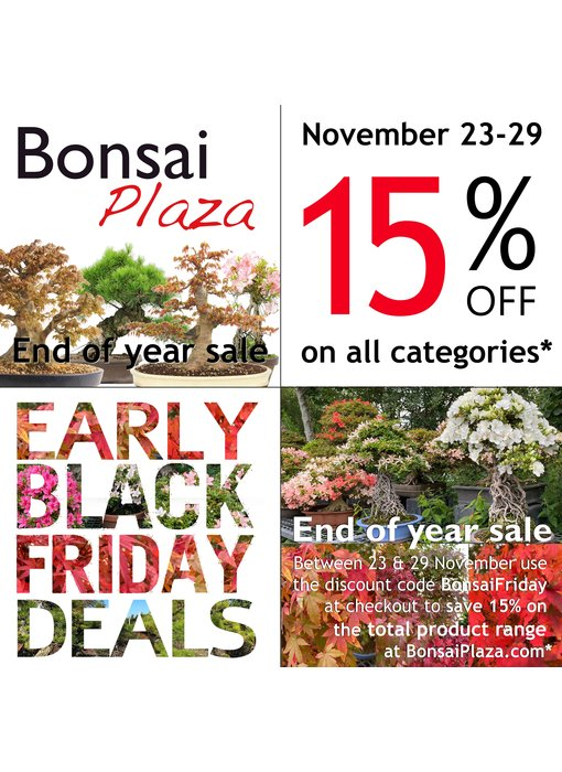 Bonsai Plaza Super Sales
