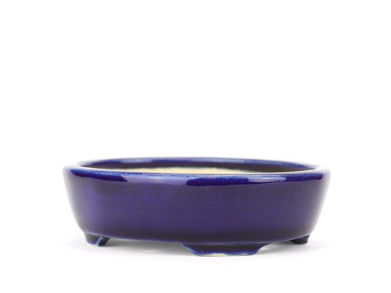 Ovale blauwe Yozan bonsaipot - 123 x 110 x 35 mm