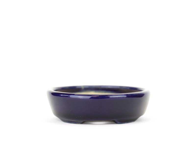 Ovale blauwe Yozan bonsaipot - 100 x 83 x 25 mm