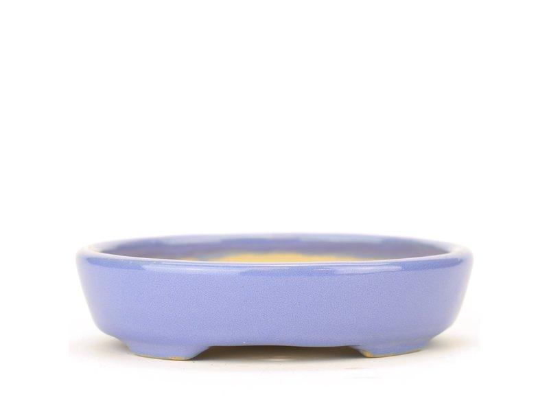 Ovale blauwe Yozan bonsaipot - 105 x 85 x 25 mm