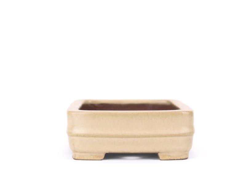 Rechthoekige beige Shibakatsu bonsaipot - 135 x 102 x 38 mm