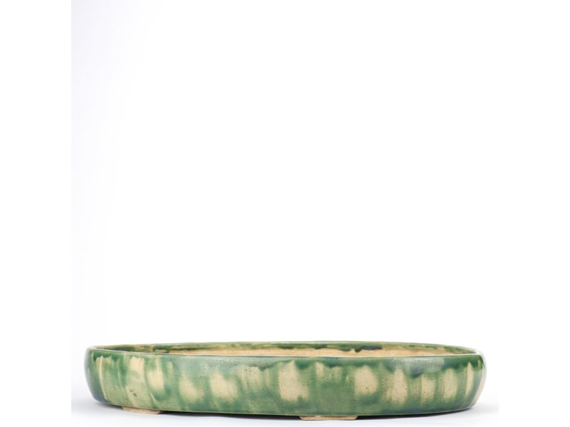 Ovale veelkleurige bonsaipot - 415 x 290 x 60 mm
