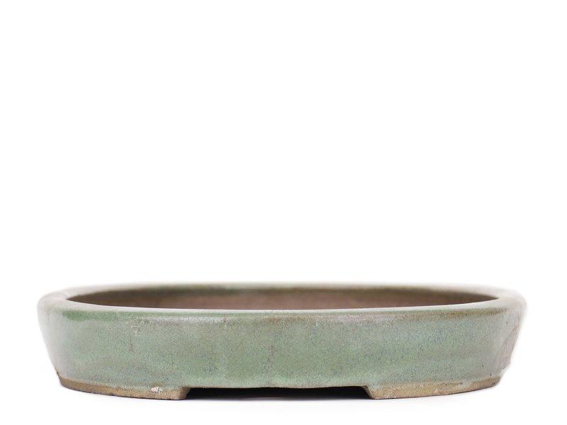 Ovale groene bonsaipot van Taizan - 425 x 295 x 50 mm