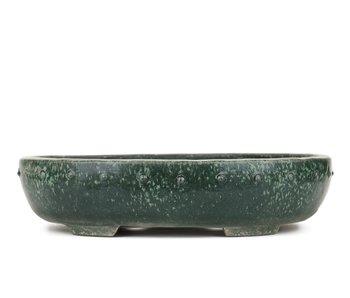 390 mm oval green bonsai pot by Shuhou, Tokoname, Japan