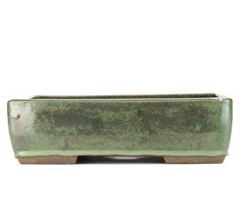 Maceta de bonsai rectangular verde de 315 mm de Taizan, Tokoname, Japón