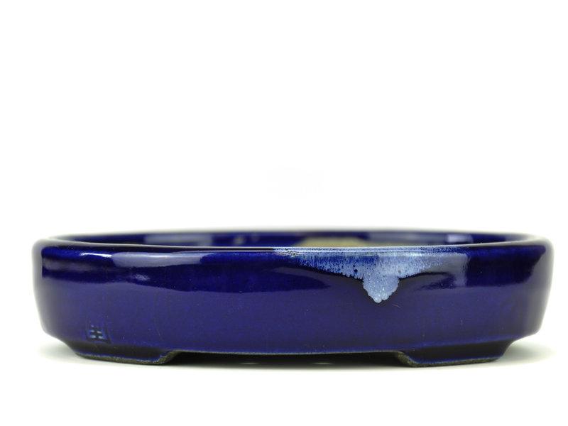 Ovale blauwe bonsaipot van Terahata Satomi Mazan - 155 x 128 x 34 mm