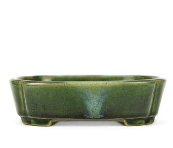 165 mm oval green bonsai pot by Terahata Satomi Mazan, Tokoname, Japan