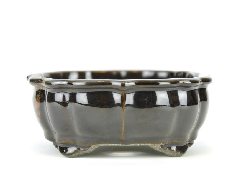 Rectangular black bonsai pot by Terahata Satomi Mazan - 172 x 142 x 55 mm