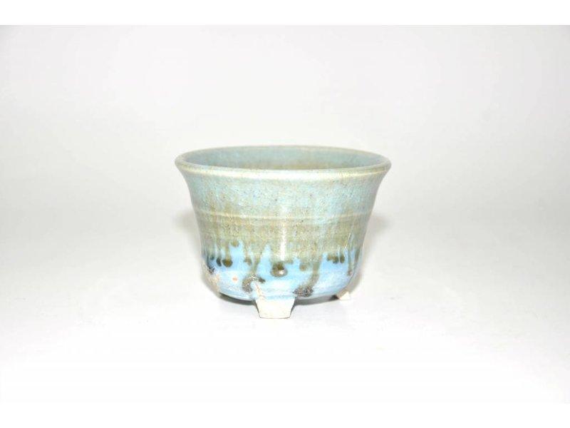 bonsai rotonda piatto 8,5 cm