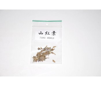 Yama Mumiji, acer palmatum graines de bonsaï