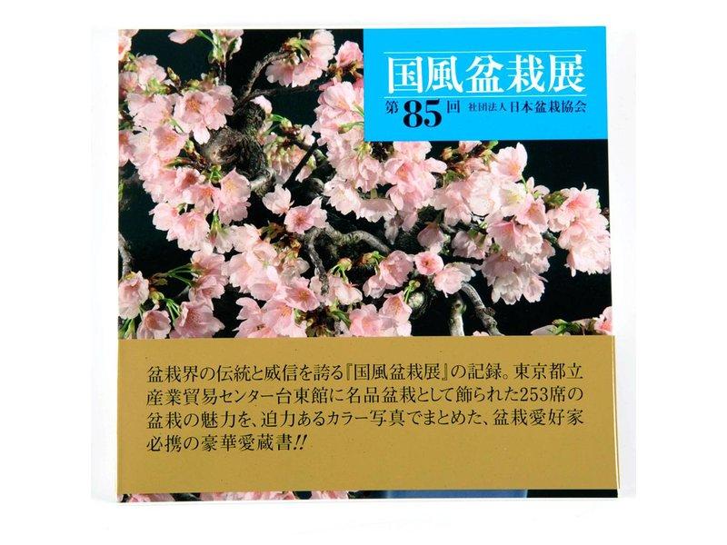 Kokofu-Ten # 85
