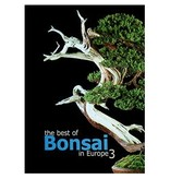 The best of Bonsai in Europe - 3