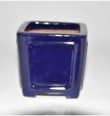 Bonsai pot blauw 9 cm Shibakatsu