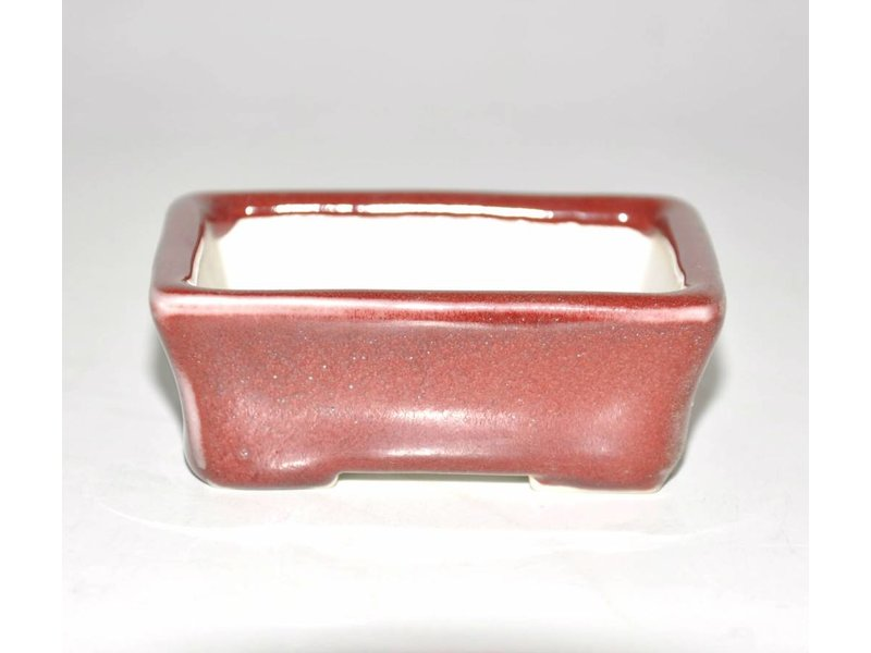 Bonsai pot rosso 8 cm