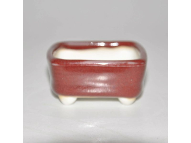 Bonsai pot rood 5,5 cm
